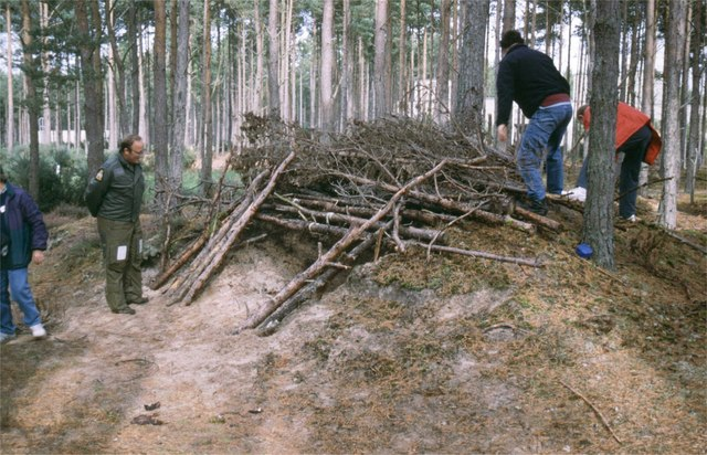 Building a survival shelter. Image from James Allan of the Geograph Project