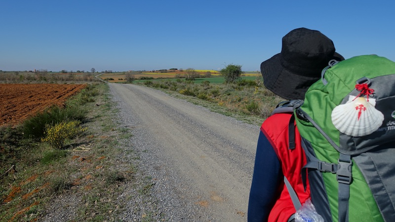 walking the camino de santiago with backpack