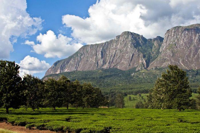 Mulanje Mountain, Malawi
