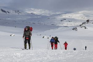 Cross country skiing, Norway