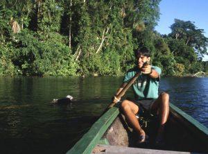 Amazon rainforest, Bolivia