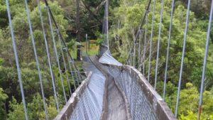 New Zealand bridge collapse