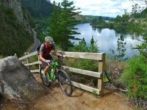 Cycling along the Waikato River, New Zealand