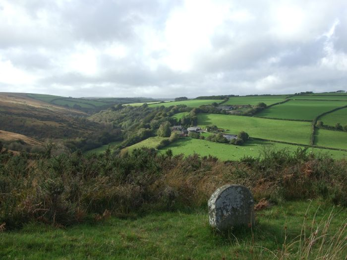Danes Brook Valley, near Exmoor