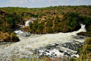 The River Nile Bank, Uganda