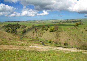 Barle Valley near Simonsbath, Exmoor