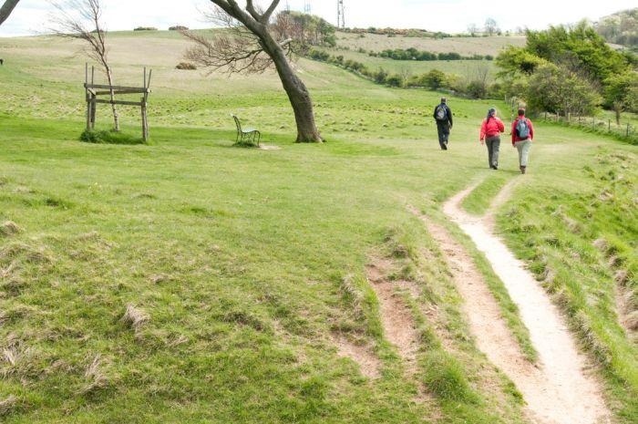 The Cotswold Way, near Cheltenham