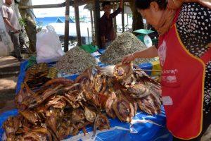 Ang Nam Ngum, Laos