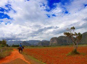 Horse riding, Viñales, Cuba