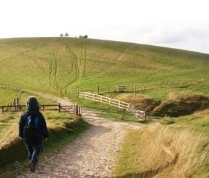 A view from The South Downs Way