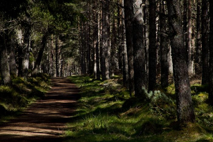 The Great Glen Way, Scotland