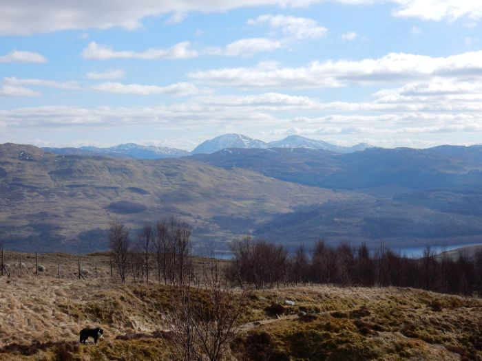 The view north from Beinn Ghlas, Scotland