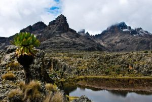 Hall Tarns, Mount Kenya, Kenya
