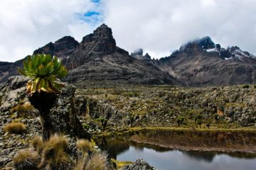 Hall Tarns, Mount Kenya, Kenya