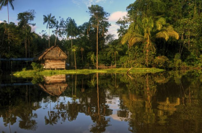 The Amazon River, Peru