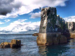 Farne Islands, Northumberland, UK