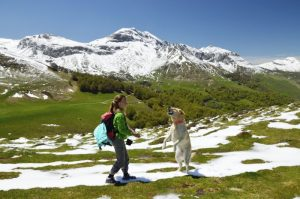 Girl with dog in the spring Pyrenees