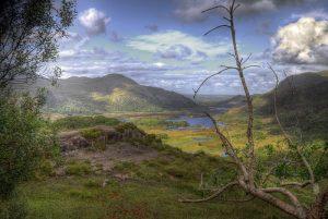 Killarney National Park, Kerry, Ireland