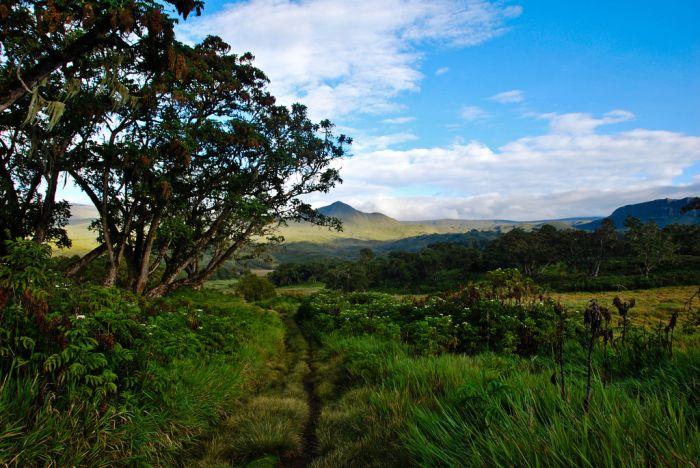 Chogoria route- Mount Kenya