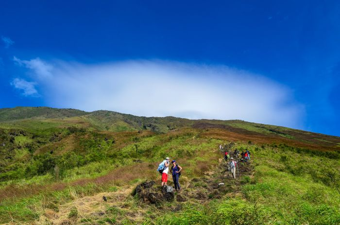 Climbing Mount Cameroon, Cameroon