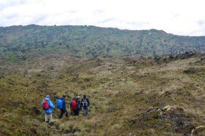 Hiking Mount Cameroon, Cameroon
