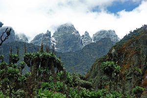 Rwenzori Mountains best hikes in Africa
