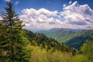 Newfound Gap - Smoky Mountains, USA