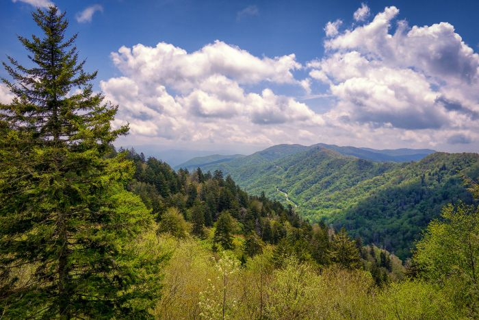 Newfound Gap - Smoky Mountains, USA