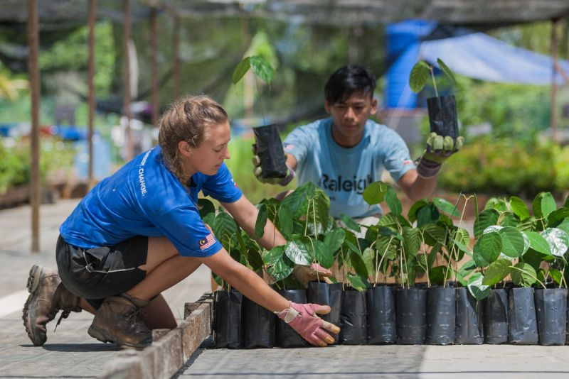 Raleigh-International-Volunteering-Expedition-Borneo