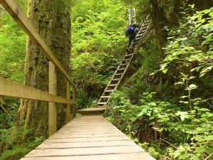 West Coast Trail ladder extreme hikes