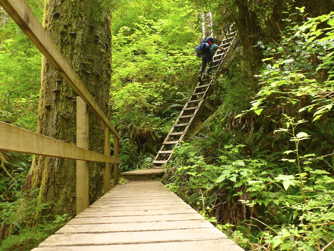 West Coast Trail ladder extreme hikes