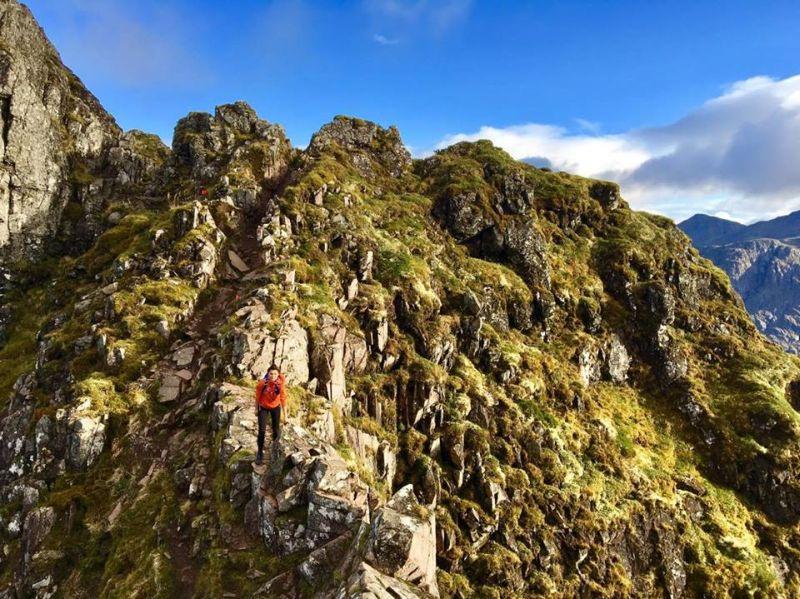 Craghoppers Kiwi Trekking Pants