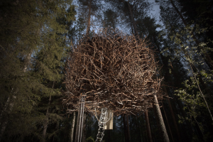 Bird nest hotel in Vancouver