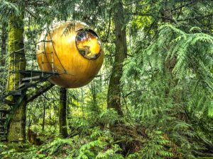 Sphere shaped tree house in Vancouver - coolest places to stay in the world