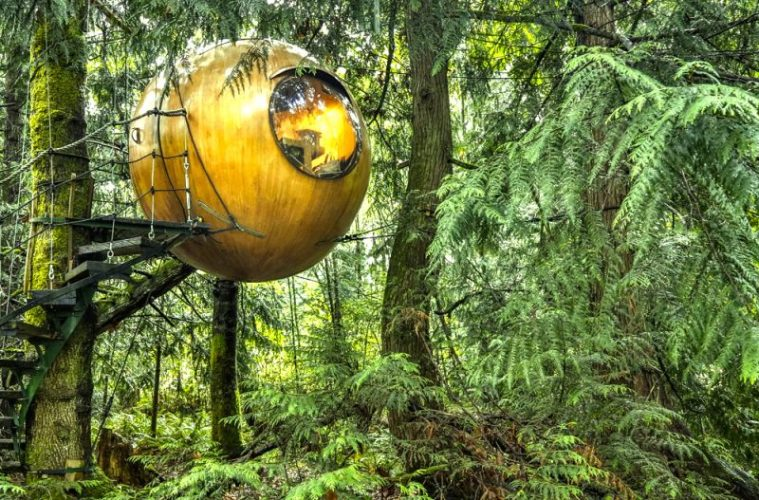 Sphere shaped tree house in Vancouver