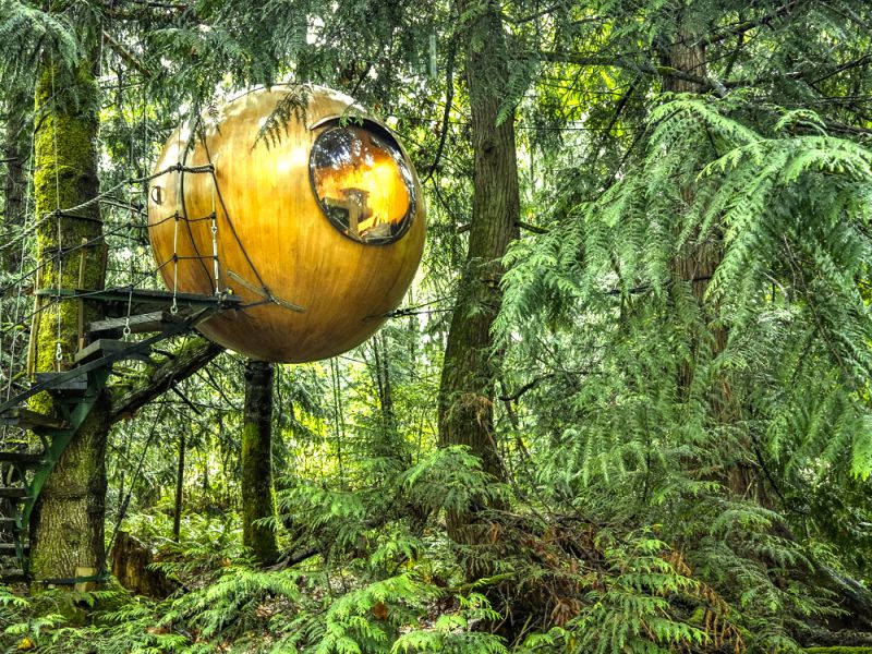 Sphere shaped tree house in Sweden