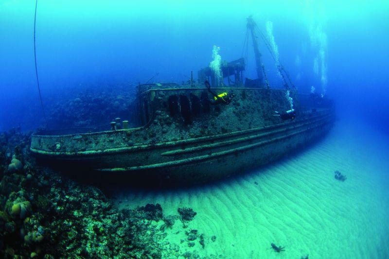 Scuba Diving in Bermuda