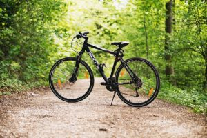 Cycling in a woodland