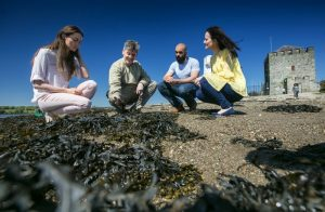 Seafood tour in Northern Ireland