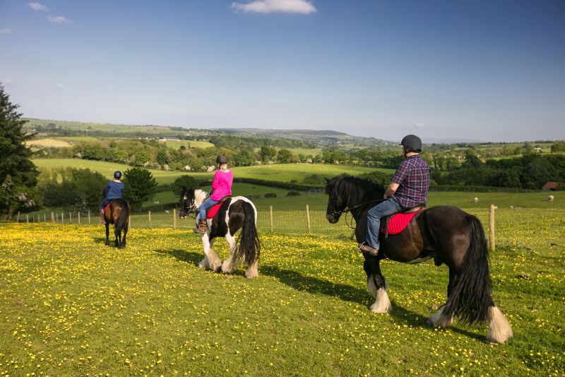Horse riding in Northern Ireland