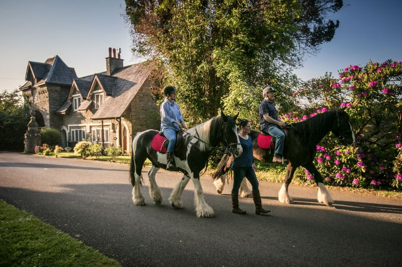 Horse riding trip in Northern Ireland