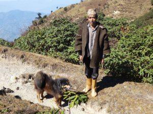 Shepherd with his dog