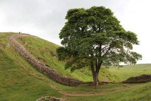 Hadrian's Wall hiking route