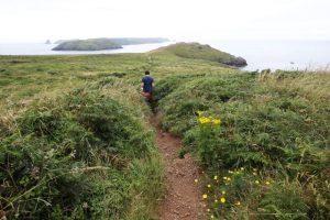 Walking the Pembrokeshire Coast Path