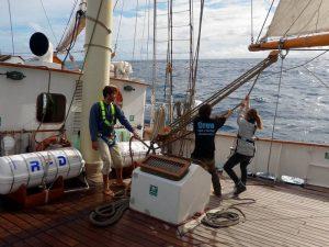 Crew members Maybe Sailing