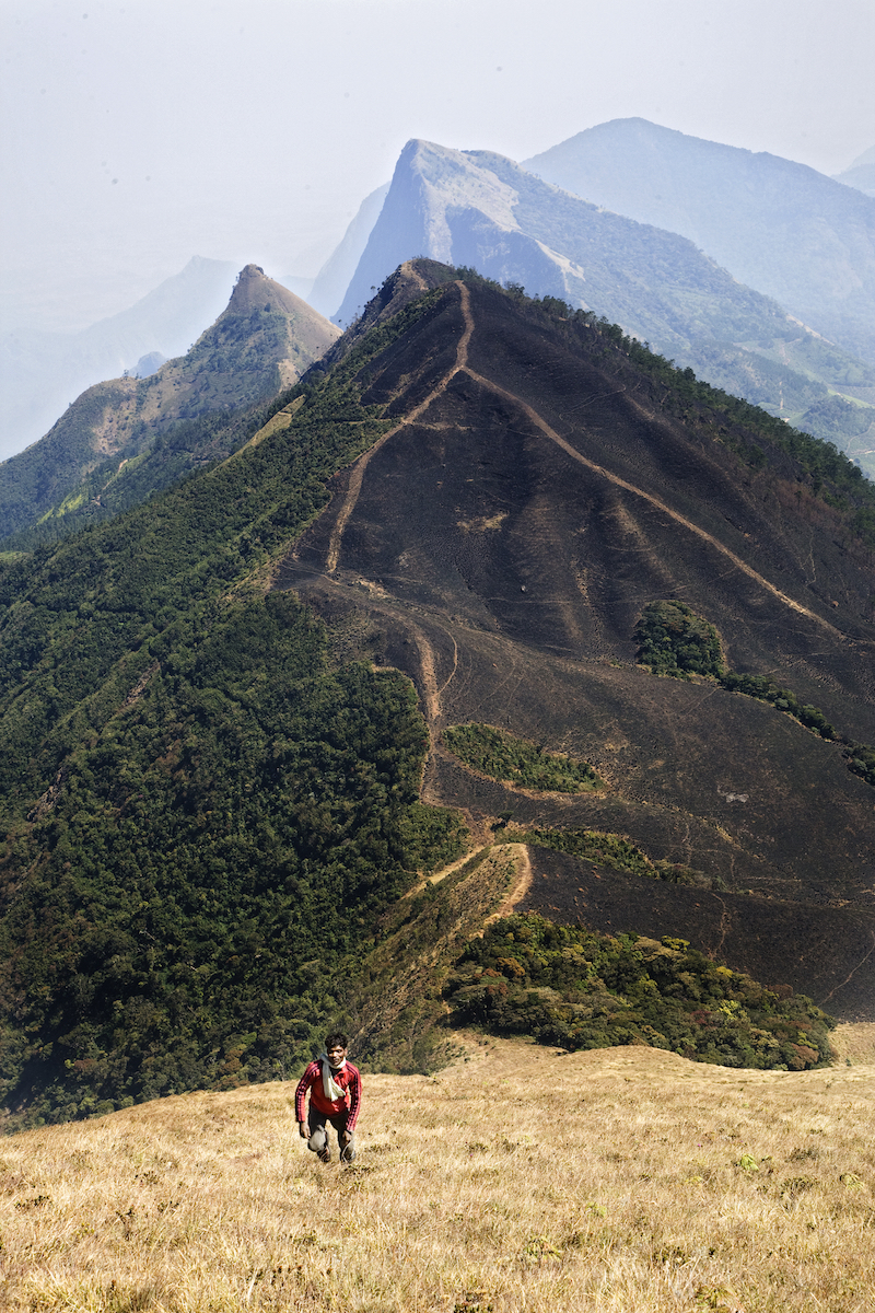 Hiking Meesapulimala in India
