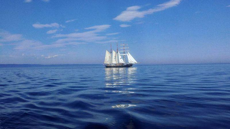 Maybe Sailing boat at sea