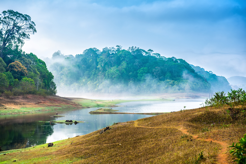 Periyar National Park in India