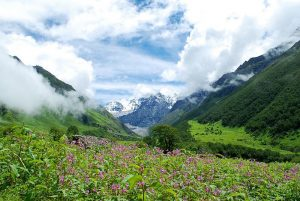 Valley of Flowers, Garhwal, India