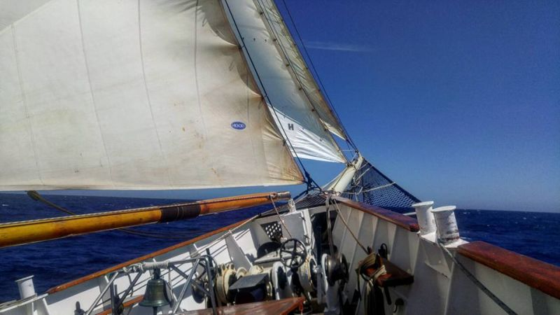 View from tall ship